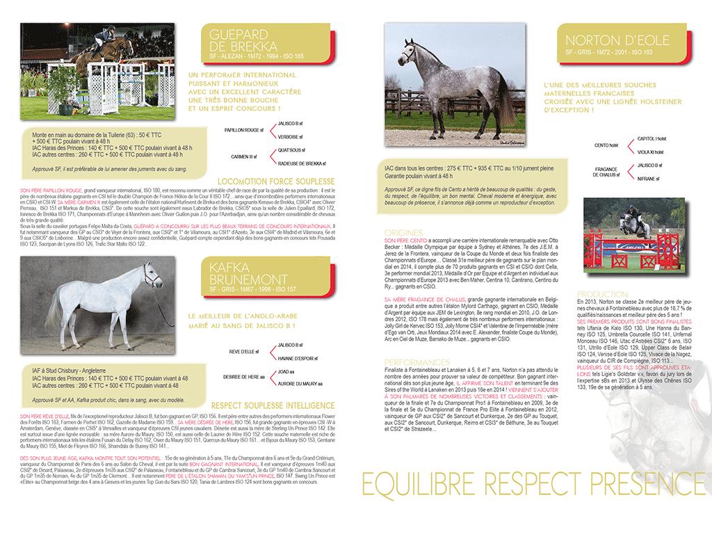 pages étalons Brochure Haras des Princes 2015