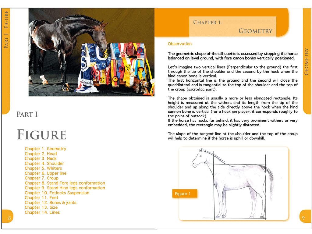"""Livre """"Conseil de croisement aux éleveurs de chevaux"""" en anglais"""