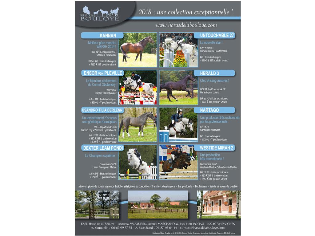 publicité étalons de sport 2018 - Haras de la Bouloye