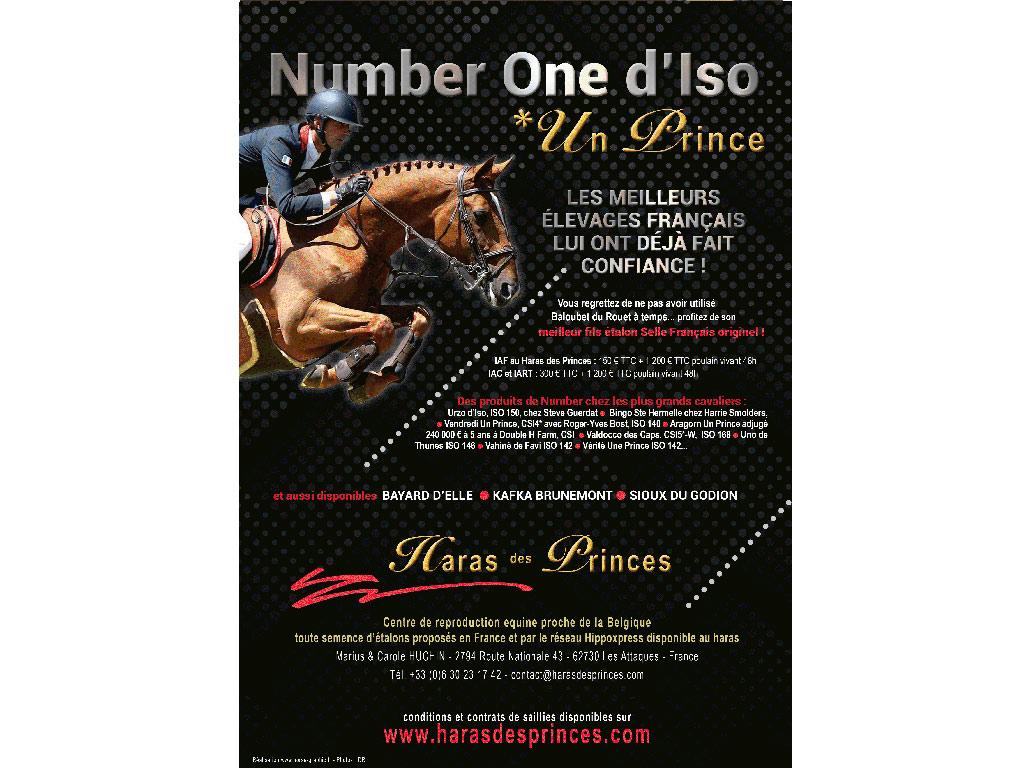 Publicité Haras des Princes