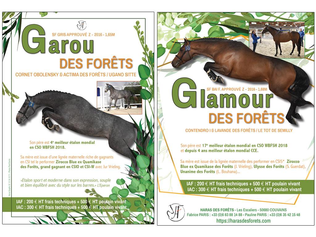 Flyer étalons Garou des Forêts et Glamour des Forêts