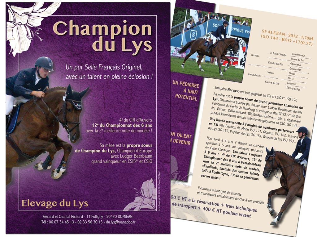 Flyer étalon Champion du Lys